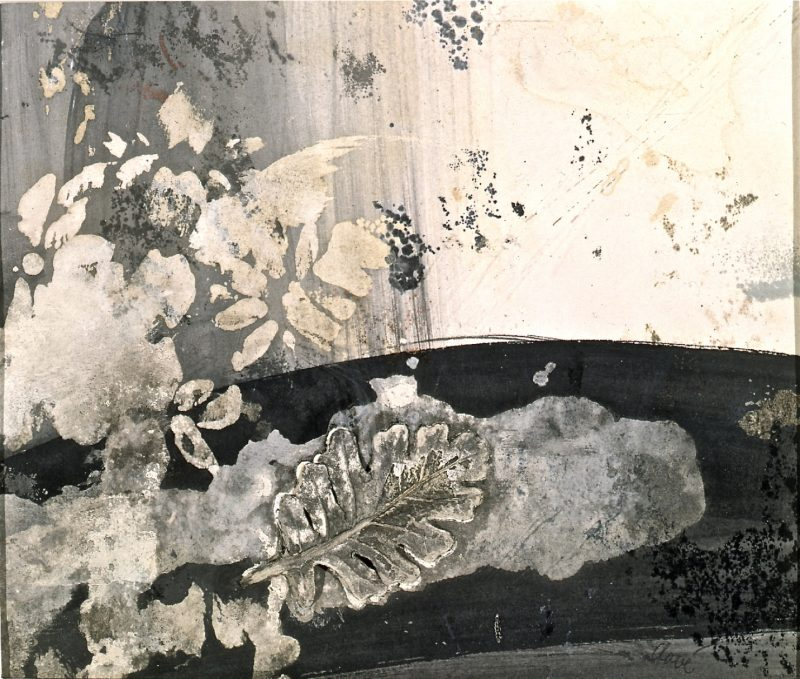 La vraie feuille - Antoni Clavé